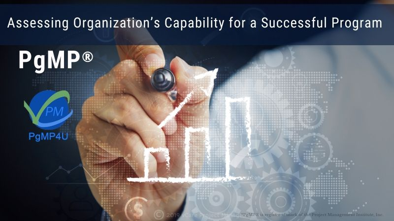 Assessing Organization's Capability for a Successful Program