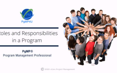 Roles and Responsibilities in a Program
